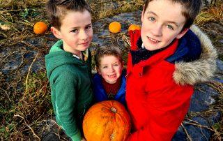 Griffin, Ezra and Jasper Smart at Arnprior Farm Pumpkins